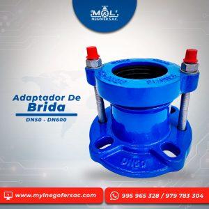 adaptador_de_brida