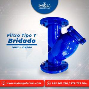 filtro_tipo_y_bridado