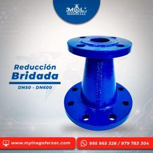 reduccion_bridada