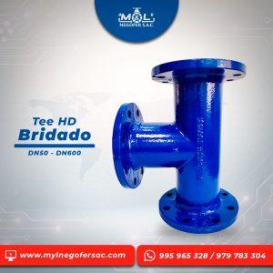 tee_hd_bridado