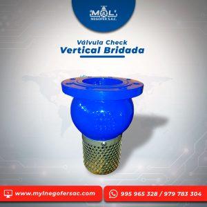 valvula-check-vertical-bridada