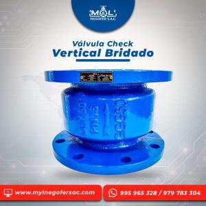 valvula_check_vertical_bridado